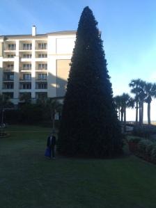 wpid-Photo-Dec-27-2012-411-PM.jpg