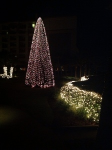 wpid-Photo-Dec-27-2012-936-PM.jpg