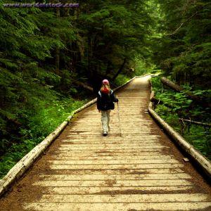 path3